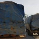 Polres Aceh Gagalkan Satu Truk Bermuatan Kayu Glondongan Ilegal