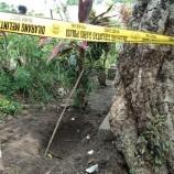 Jasad Yang Di Temukan Terkubur Terlihat Beberapa Kaki Muncul Ke Permukaan