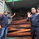 KLHK Bongkar Penyelundupan Kayu Ilegal dari Papua Barat Senilai Rp 12 Miliar